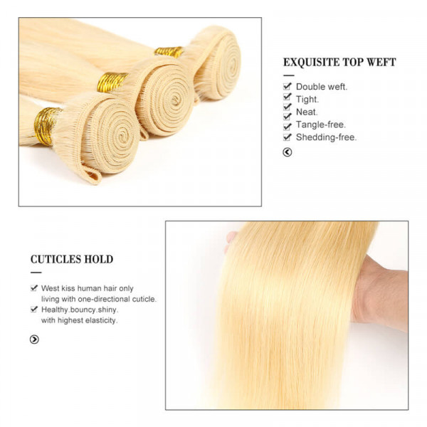 Blonde Straight Virgin Hair