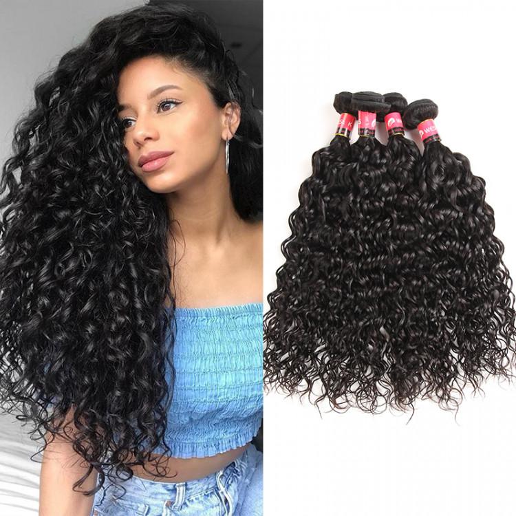 Brazilian Natural Wave Virgin Brazilian Hair 4 Bundles Wet And Wavy Water Waves West Kiss Hair