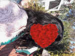 I love my hair received in 5 days I s...
